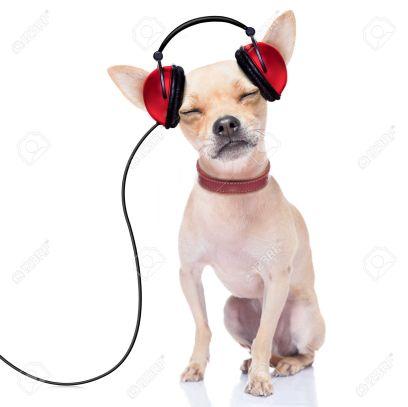 dog music